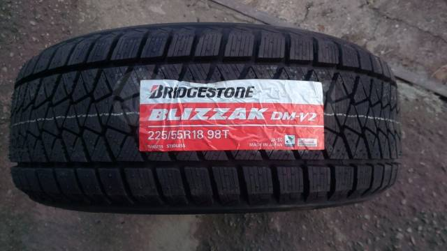 Bridgestone Blizzak DM-V2, 225/55R18