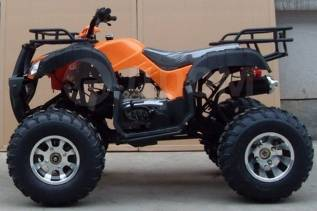 Grizzly 200, 2020