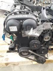 Двигатель Ford Focus SHDA 1.6 в Красноярске