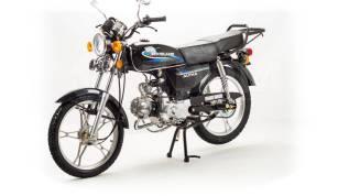 Motoland Alpha 110, 2020