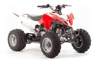 Квадроцикл MotoLand ATV 250S (машинокомплект), 2020