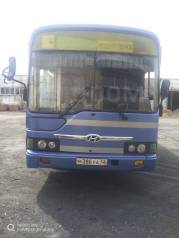 Hyundai Aero City 540, 2009