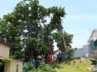 Аренда Автовышки 15метров и 28мметров. Пилим деревья.
