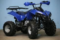 Armada ATV 110G, 2013