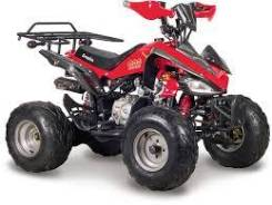 Scorpion 110cc, 2013