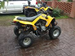 Can - Am DS 250, 2007