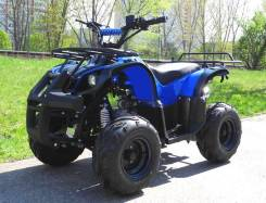 Armada ATV 125, 2013