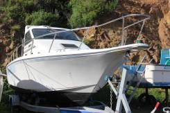 Лодка Blue Shark 260