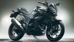 Мотоцикл Kawasaki Z300 ABS Серый,Оф.дилер Мото-тех, 2016