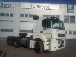 КамАЗ 65206-Т5, 2021