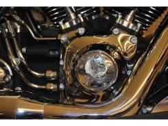 Harley-Davidson Softail, 2009