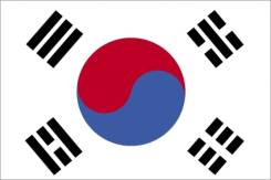 Флаг Южная Корея №6 45*30 см