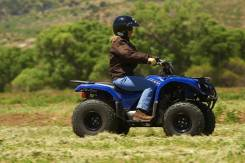 Yamaha Grizzly 125, 2012