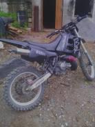Suzuki, 1996