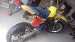 Suzuki, 1995