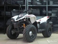 ATV 100 RS