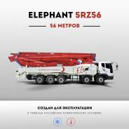 Elephant 5RZ56, 2017