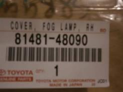 Очки противотуманки LEXUS RX350, GGL15, 8148148090, 419-0000205