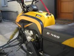 Irbis Dingo T125, 2013