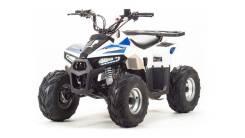 Квадроцикл ATV 110 EAGLE, 2018