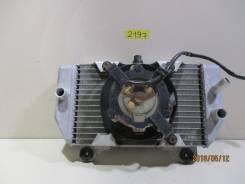 2197) Радиатор Honda Forza