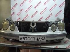 Nose cut Mercedes-BENZ CLK-Class