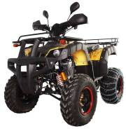 Avantis Hunter 250 LUX, 2020