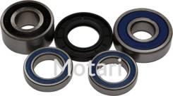 Комплект подшипников и сальников заднего колеса All Balls 25-1383 VTX1300, VTX1300R, VTX1800