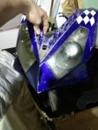 Patron Shark, 2007
