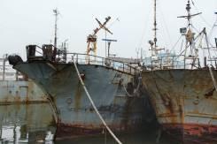 Рыботранспортное судно «Луиджи»