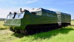 Витязь ДТ-30П, 2019