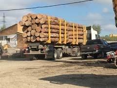 Услуги перевозки леса, пиломатериалов двухпачечным лесовозом