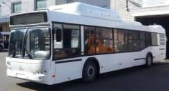 МАЗ 103965. Автобус , 90 мест, В кредит, лизинг. Под заказ