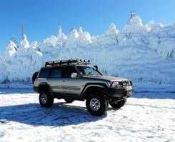 Nissan Safari. С водителем