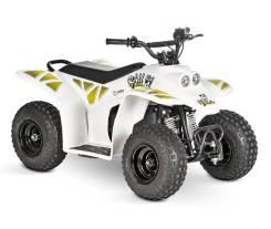 Baltmotors Barboss Mini, 2019