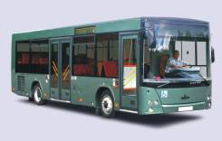МАЗ. 206063 (автобус городской среднего класса)