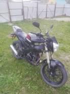 Irbis GR 250, 2013