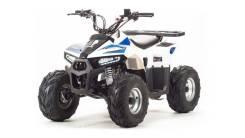 ATV 110 EAGLE, 2019