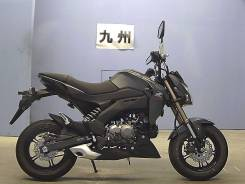 Kawasaki, 2017