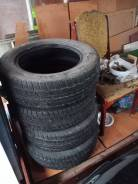 Dunlop Graspic DS2, 195/65 16r