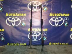 Амортизатор задней двери Toyota Estima MCR40 комплект 68950-28200, 68960-28200