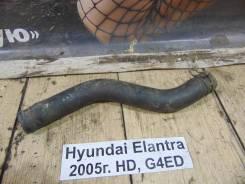 Патрубок радиатора верх. Hyundai Elantra HD Hyundai Elantra HD 2005