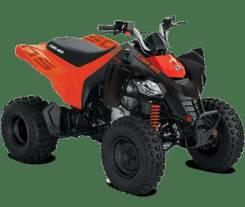 BRP Can-Am DS 250, 2020