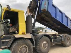 Tatra. Татра Т815-290S8Т 8*8, 12 667 куб. см., 25 000 кг, 12 667куб. см., 25 000кг., 8x8