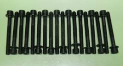 Болты гбц головки комплект YD25 DDTI 11056-5X00A