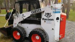 Racoon, 2011