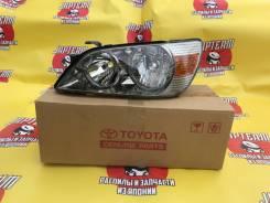 Новая фара Toyota Altezza 53-1