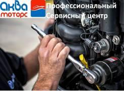 Профессиональный Ремонт, ТО лодочных Моторов и Катеров
