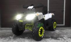 Motoland Wild Track 200LUX, 2020