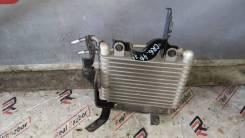 Радиатор масляный. Honda Accord, CR6